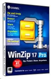 WinZip Pro Maintenance (1 Yr) ML (100000+)