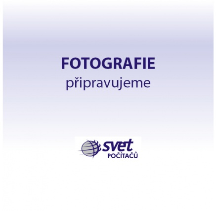 AVAST Antivirus  Business AV - Spravovaný 45 PC 1 Rok